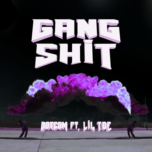 دانلود آهنگ Dotcom & Lil Toe به نام Gang Shit