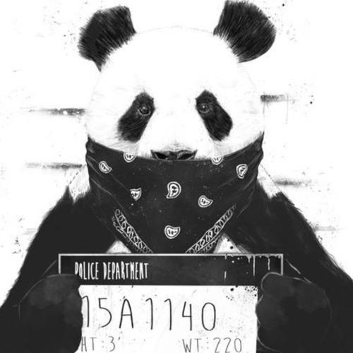 دانلود آهنگ KEAN DYSSO به نام Panda