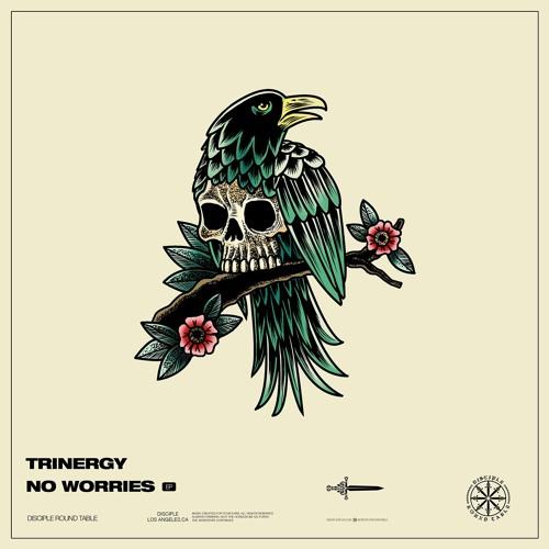 دانلود آهنگ Trinergy & Rob Gasser به نام WITHOUT U