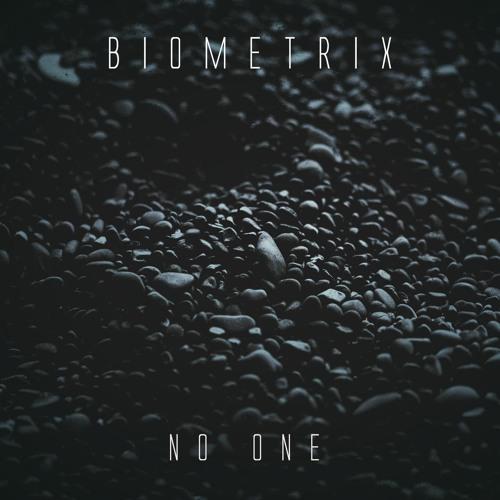 دانلود آهنگ Biometrix به نام No One