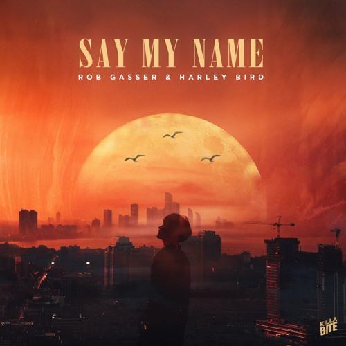 دانلود آهنگ Rob Gasser & Harley Bird به نام Say My Name