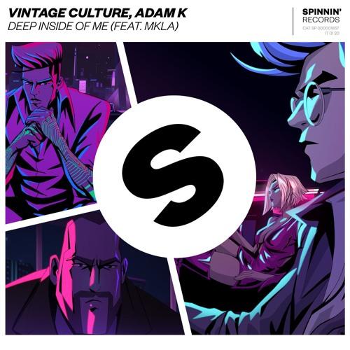 دانلود آهنگ Vintage Culture & Adam K به نام Deep Inside Of Me