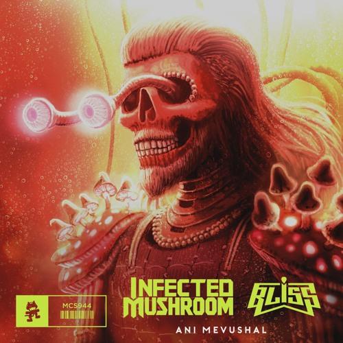 دانلود آهنگ Infected Mushroom & Bliss به نام Ani Mevushal