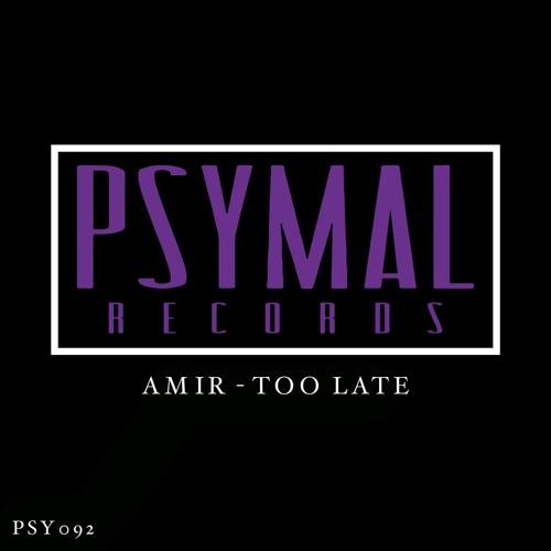 دانلود آهنگ Amir به نام Too Late