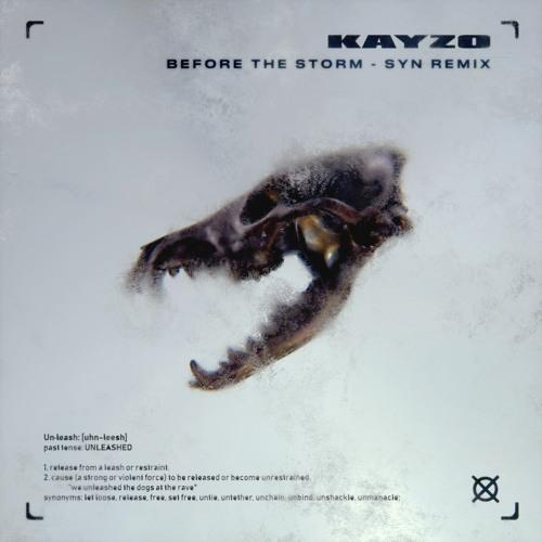 دانلود ریمیکس آهنگ Kayzo & blessthefall - Before The Storm از SYN