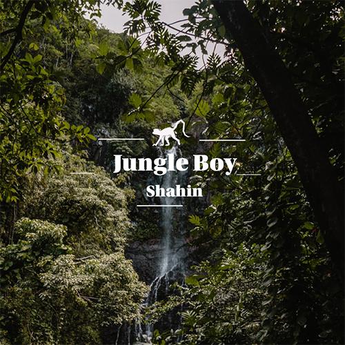 دانلود آهنگ Shahin به نام Jungle Boy